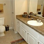 The Falls At Highpoint Apartment Bathroom