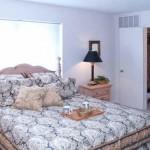 Biltmore Apartment Bedroom