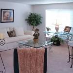 Biltmore Apartment Living Room