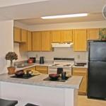 Camden Springs Apartment Kitchen
