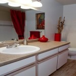 Carriage Homes of Signature Place Apartment Washroom
