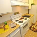 Celery Stalk Apartment Kitchen