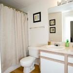 Estates on Frankford Apartment Bathroom