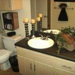 Idlewyld Village Apartment Bathroom