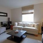 Oak Run Apartment Living Room