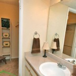 Pear Ridge Apartment Bathroom