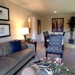 Preston Village Apartment Living Room