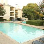 Rock Creek Apartment Pool View