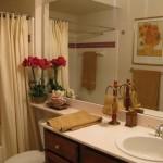 St. Moritz Apartment Bath Room