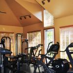 Stone Ridge North Dallas Apartment Fitness Center