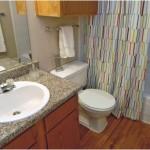 The Manhattan Apartment Bathroom