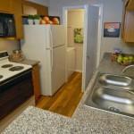 The Manhattan Apartment Kitchen