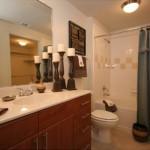 Village on the Green Apartment Master Bathroom