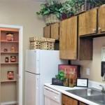 Willows on Rosemeade Apartment Kitchen