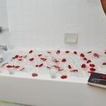 Advenir at Highland Park Apartment Bathroom