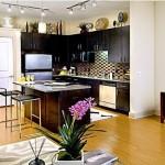 Alta Design District Apartment Kitchen.