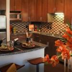 Alta Design District Apartment Kitchen