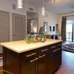Alta Henderson Apartment Kitchen