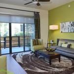 Alta Henderson Apartment Living Room