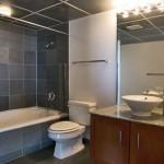 Lofts at Mockingbird Station Apartment Bath Room