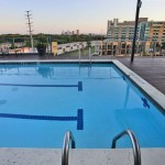 Lofts at Mockingbird Station Apartment Pool