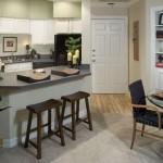Post Meridian Apartment Kitchen