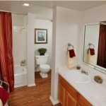 The Lakes in the Village Apartment Bathroom
