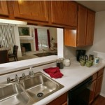 The Lakes in the Village Apartment Kitchen