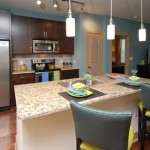 The Standard Apartment Kitchen