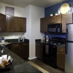 White Rock Lake Apartment Kitchen.