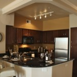 White Rock Lake Apartment Kitchen