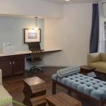 White Rock Lake Apartment Media Room