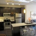 Zang Triangle Apartment Kitchen
